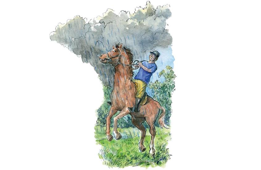 Aufbaeumendes-Pferd-Cornelsen2